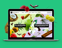Sensory FX – Website design & development