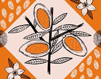 Saturday Kitchen Week Fifteen: Almond