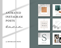 ANIMATED Instagram Posts – Lucia