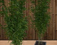 V-ray Plants