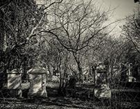 Photowalk St. Marxer Friedhof