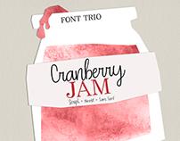 CRANBERRY JAM. Handwritten Font Trio.