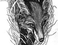 The Fox Nest