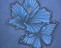 Creative Blue Butterfly Wing Hibiscus Flower Drawing