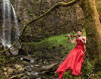 Music at the Falls