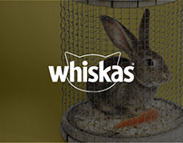 Whiskas — Advertising Project