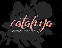 Cataleya Typeface - Free Font