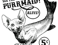 The Purrmaid