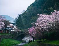 Japan - Asakura