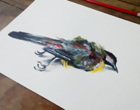 Dead Bird - Acrylic Painting on Paper