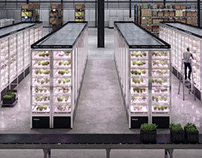 Infarm - Urban Farming Illustrations