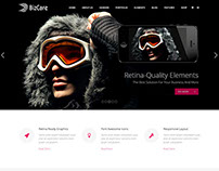 BizCare – Responsive Multipurpose WordPress Theme
