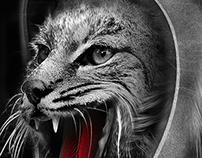 FANTASMAGORIK® STRAY CATS