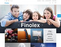 Finolex Website Design