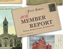 Annual Report, Texas Association of Counties, 2016-17