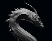 My take on Wietze Fopma's Dragon