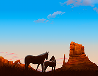 Western concept