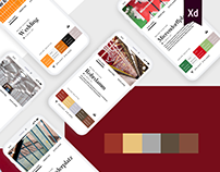 Berlin metro colors #iconcontestxd