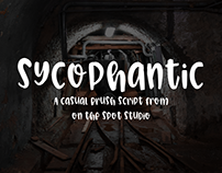 Sycophantic
