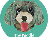 044 | Toy Poodle (Blue)