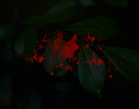 il lato oscuro del Green Food - Web