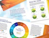 Brochure, Catalog and Annual Report Design