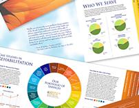 Brochure, Catalog and Annual Report Design