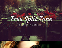 Free Split Tone Photoshop Actions