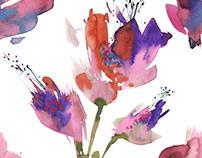 Watercolor patterns/Flowers