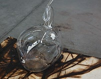 2014 - Shape of Flight: Ascent in Glass