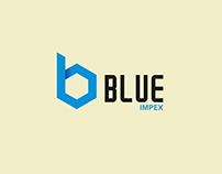 Blue Impex (Brand Designing)