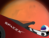 S T A R M A N // SpaceX