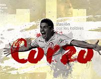 Universitario / Cracks / illustrations / Aldo Corzo