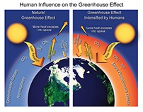 Human's influence in the green house effect