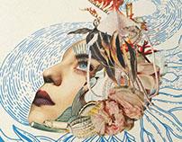 Collage & Illustration