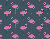 The Flamingo Project