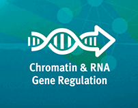 WEIZMANN for iCORE - Chromatin & RNA Gene Regulation