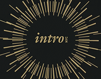introNYC app 2015