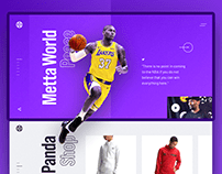 Website Design for Metta World Peace