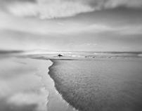 Beach Life (III)