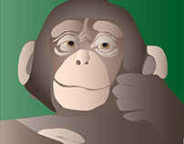 Monkey - Vector Art