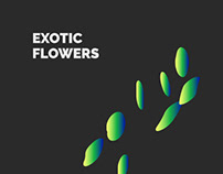 EXOTIC FLOWERS — Corporate Identity / Branding