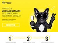 Animal Assurance