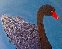 Black Swan (Kunming)