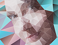 Portrait Polygon Experiment