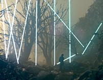 Marcus Grimm - Wild