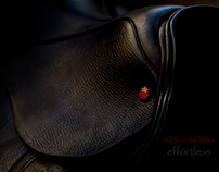 Albion Dressage Saddle