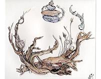 Driftwood Meditation