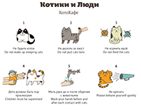 Правила для КотоКафе / rules for Cat cafe