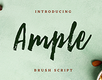 Ample Brush Script Font